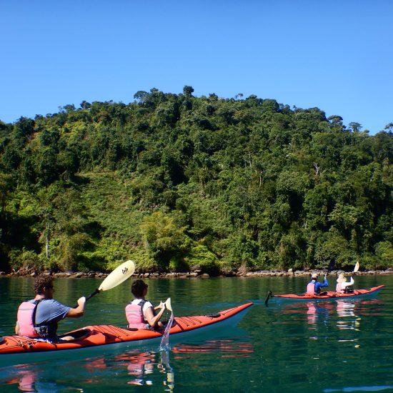 manguezal e ilhas de Paraty