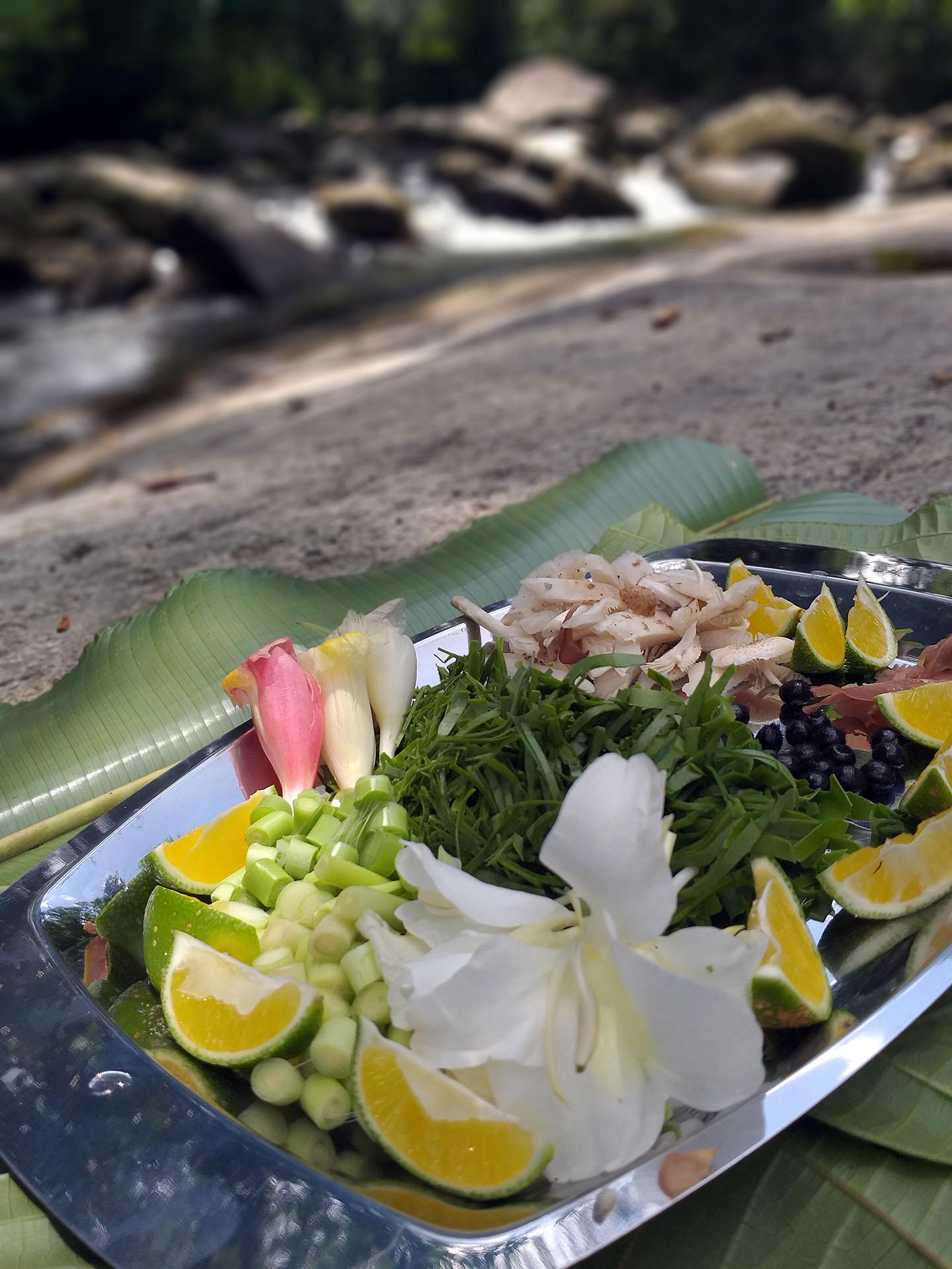 Salada da Mata Atlântica