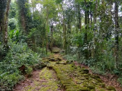 Gold Hiking in Paraty - Trilha do Ouro
