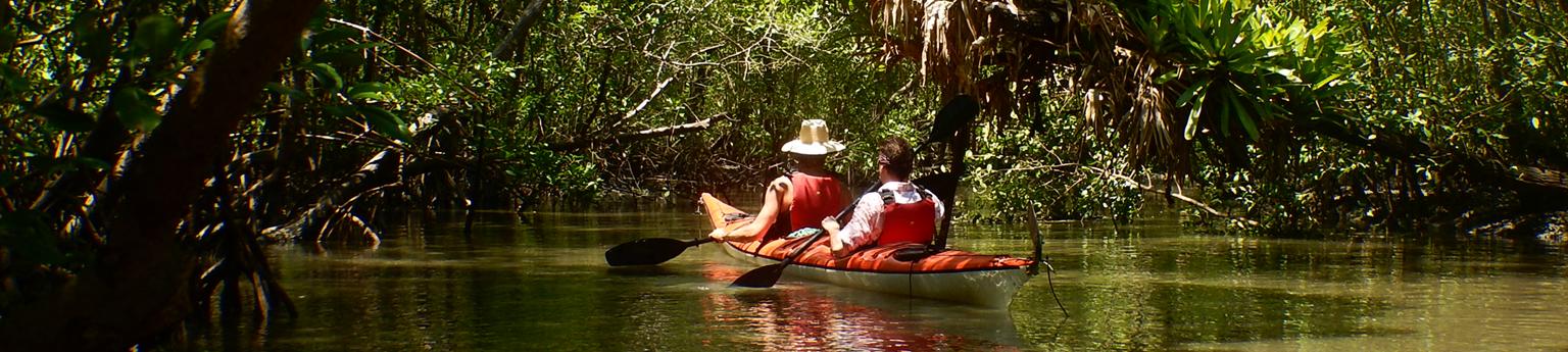Passeio de caiaque - manguezal